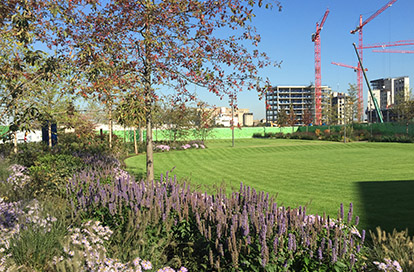 Royal Wharf Park Completed